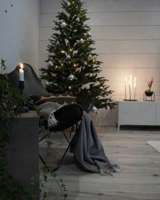 Joulukuusi ja lepakkotuoli