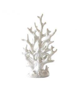 Korall koriste